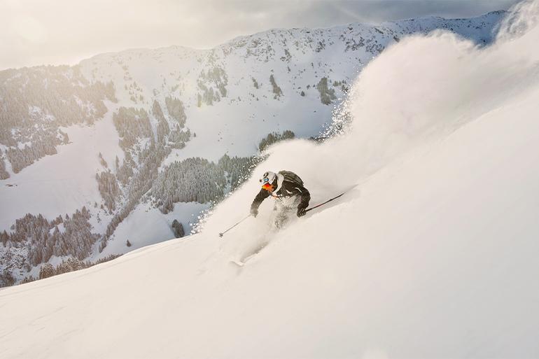 Nortlander-puder-skidresor
